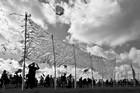 DIEPPE - Festival International de cerf-volant 2
