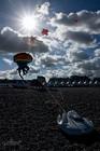 DIEPPE - Festival International de cerf-volant 14