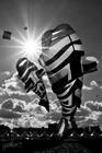 DIEPPE - Festival International de cerf-volant 16