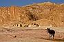 Désert du Sinaï